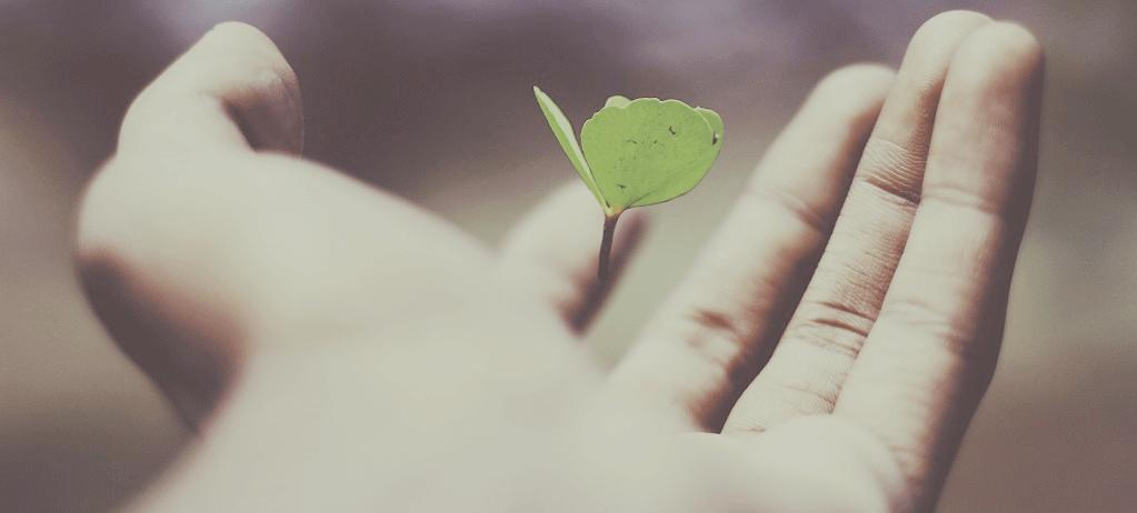 lebensversicherung abschließen – 3 Arten